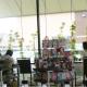 お休みしていた県央店カフェスペース、本日PM1時より席数を大幅に間引いて再開します。