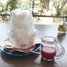 かき氷は今日で終わりです。(県央店)