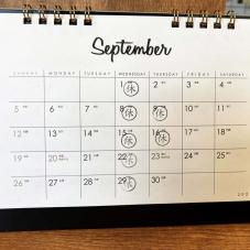 9月の定休日のご案内